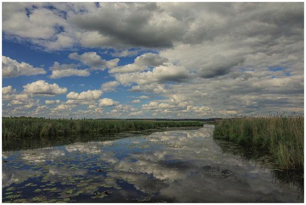 Uferlandschaft Federseekanal 3438