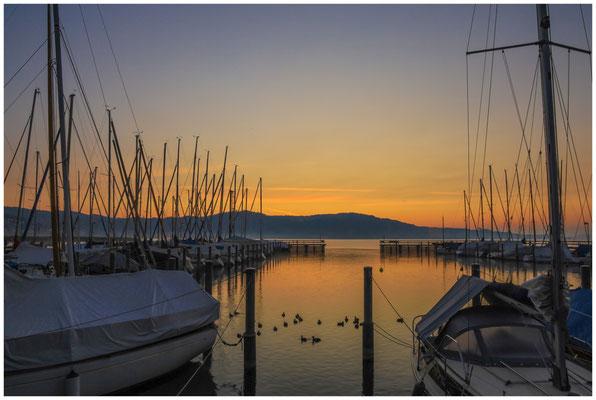 Morgendämmerung im Jachthafen von Bodman 3954