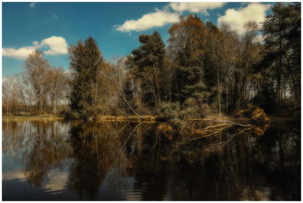 Moorteich im Pfrunger-Burgweiler Ried 6614