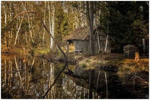 Uferlandschaft Moorsee mit Hütte 2186