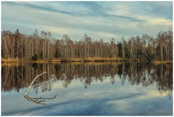 Moorsee im Pfrunger-Burgweiler Ried 1901