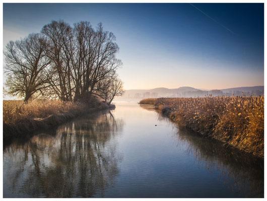 8533 Naturschutzgebiet Radolfzeller Aach - Bodenseemündung