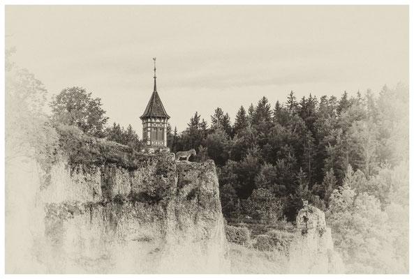 Esel in luftiger Höhe vor dem Kirchturm St. Anna in Unterschmeien 4305
