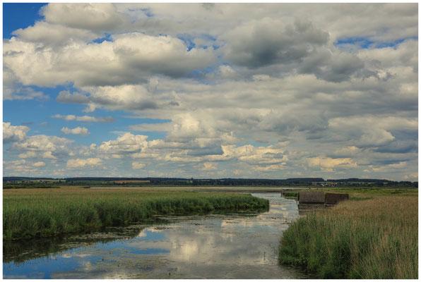 Uferlandschaft Federseekanal mit Bootshütten 3433