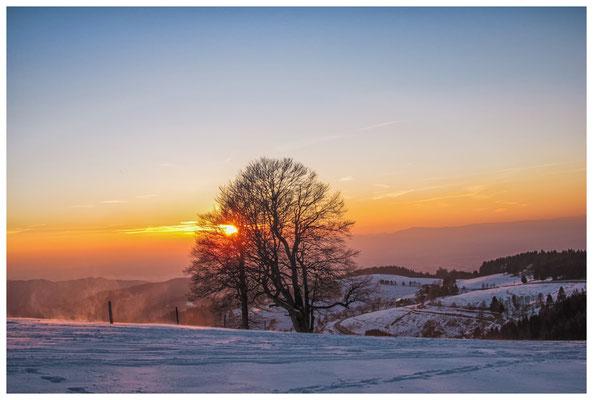 Sonnenuntergang auf dem Schauinsland 7855
