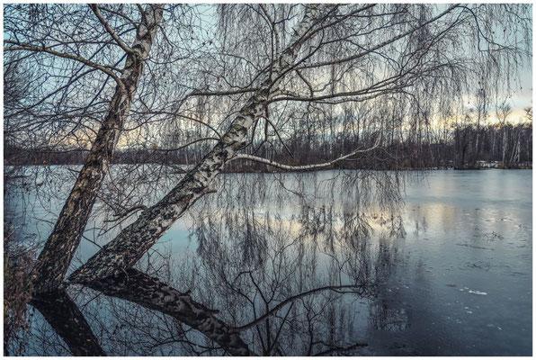 Uferlandschaft Nillsee 5269