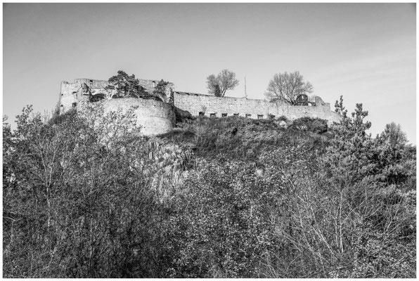 Festungsruine Hohentwiel 4974