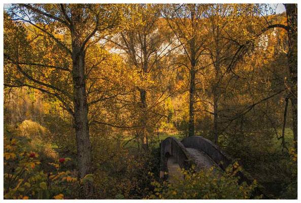 6922 Alte Steinbrücke bei Beuron