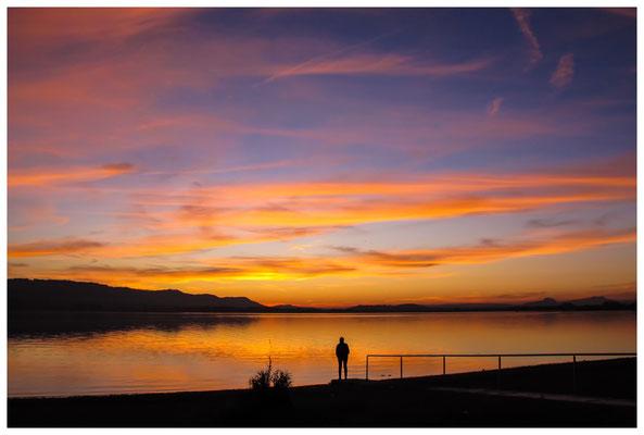 7094 Nach Sonnenuntergang auf der Halbinsel Mettnau