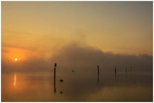 Sonnenaufgang über dem Zeller See mit Nebelschwaden 3501