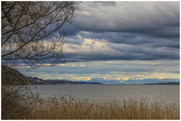 """Uferweg NSG """"Bodenseeufer"""" mit Blick auf den Überlinger See 2053"""