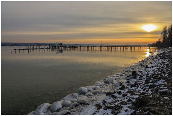 Eisiges Ufer in Iznang 6066