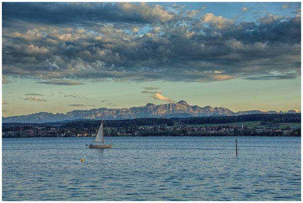 Segelboot vor dem Schweizer Ufer mit Säntis 0902