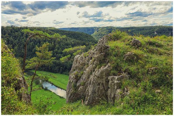 Blick vom Schaufelsen auf die Donau 8010