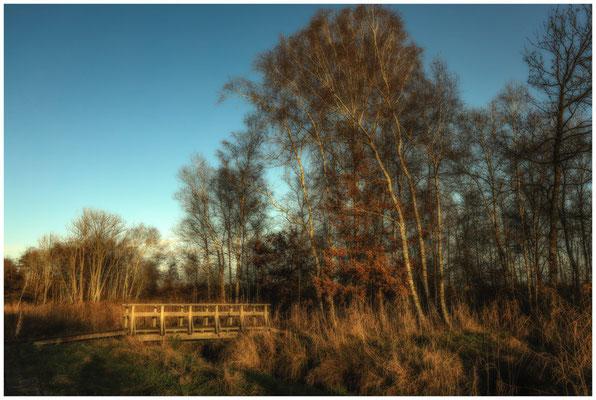 Holzbrücke im Pfrunger-Burgweiler Ried 5042