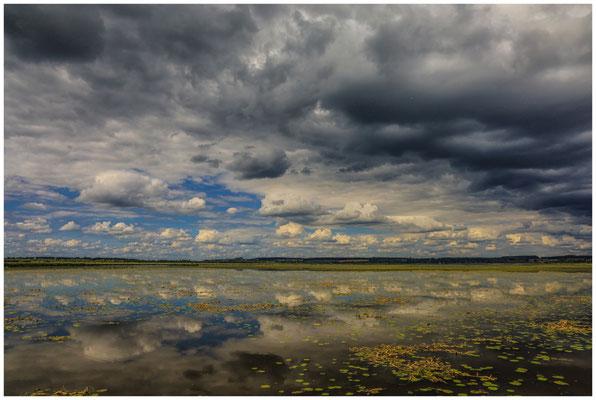 Uferlandschaft Federsee mit dunklen Wolken 3398