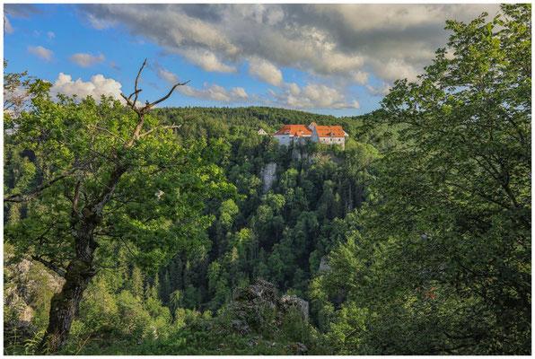 Burg Wildenstein 7788