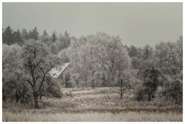 Winterlandschaft mit altem Bauernhaus bei Stockach 2524