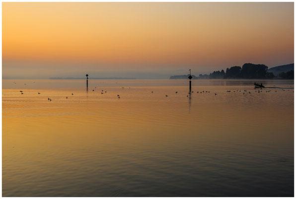 Morgendämmerung über dem Zeller See 0516