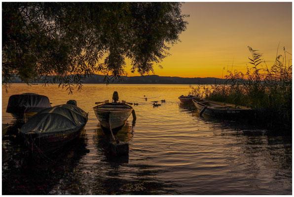 Morgendämmerung mit Fischerbooten auf der Insel Reichenau 0691