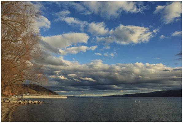 Ufer bei Ludwigshafen mit Blick auf den Überlinger See und den Bodanrück 2065