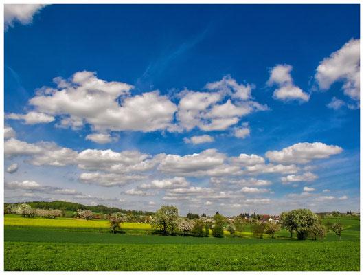 Landschaft im Hegau bei Stockach im Frühling 9050
