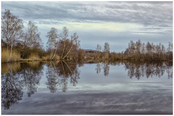 Moorsee im Pfrunger-Burgweiler Ried 1957