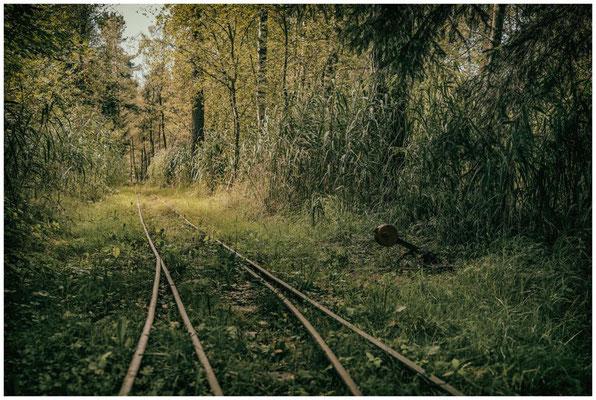 Schienen und Stellwerk für's Torfbähnle im Wurzacher Ried 3848