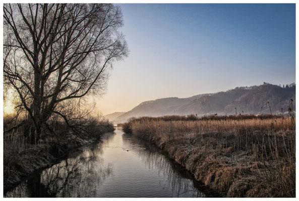 """Stockacher Aachmündung im Naturschutzgebiet """"Bodenseeufer"""" 3140"""