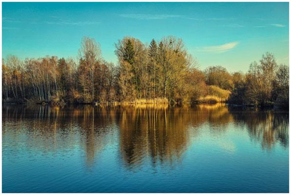Uferlandschaft Böhringer See 1556