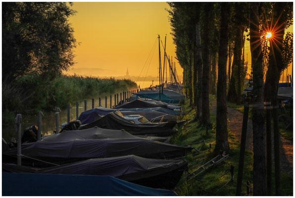 Seitenarm Jachthafen Moos mit Radolfzeller Münster im Morgenlicht 0580