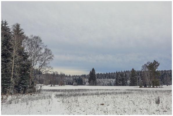 Landschaft im Irndorfer Hardt 5373