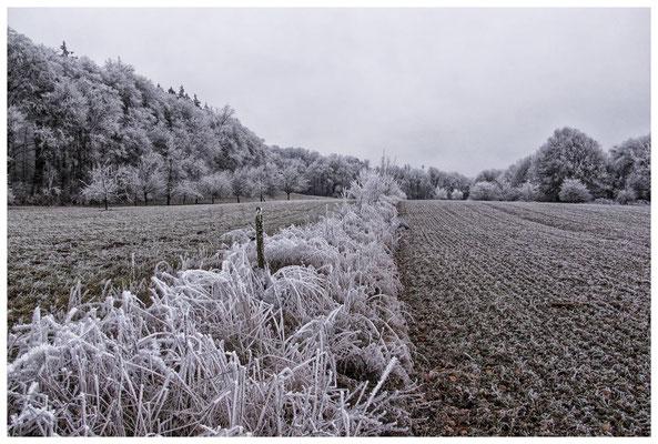 2186 Winterlandschaft
