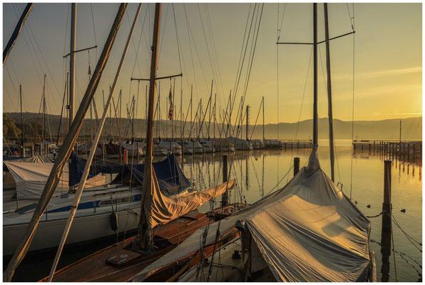 Morgenstimmung im Jachthafen Bodman 4057