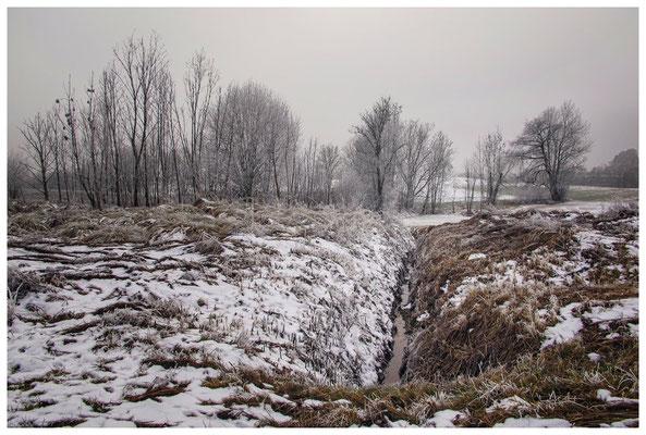 Winterlandschaft mit Raureif bei Münchhöf - Eigeltingen 2567