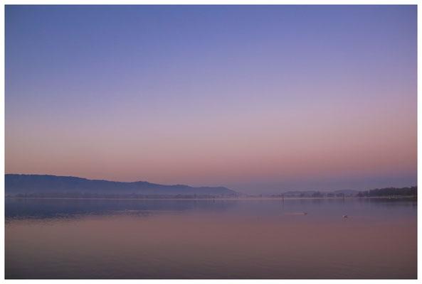 Morgendämmerung an der Radolfzeller Mole - mit Blick auf die Halbinsel Höri 2637