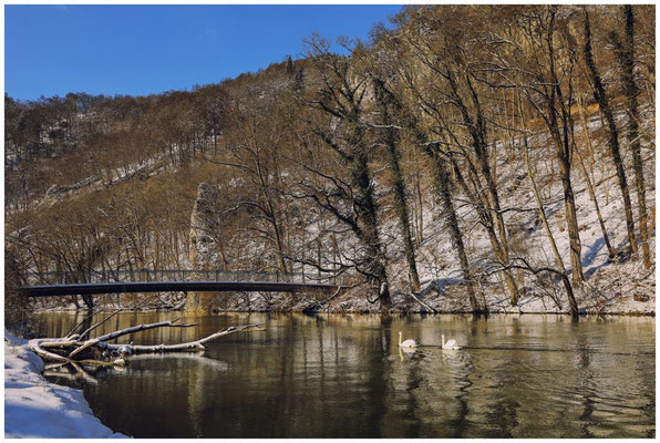 Brücke über die Donau 5787