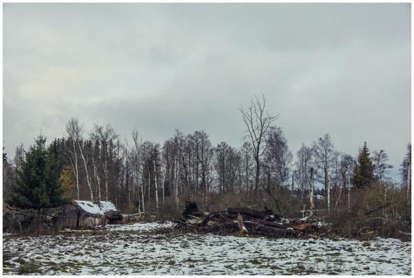 Ehemalige Torfhütte im Pfrunger-Burgweiler Ried 5233