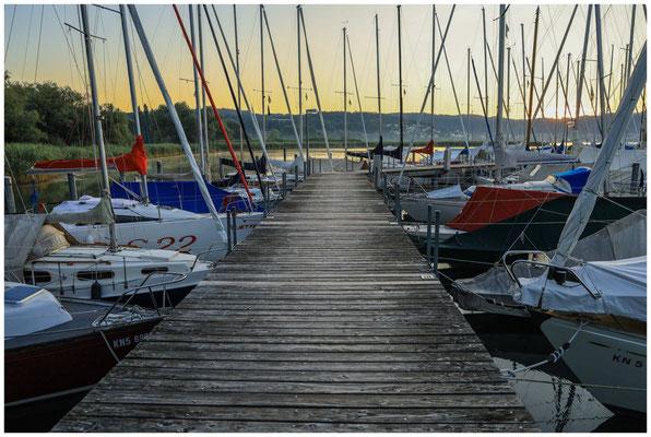 Steg mit Booten im Jachthafen Bodman 0143