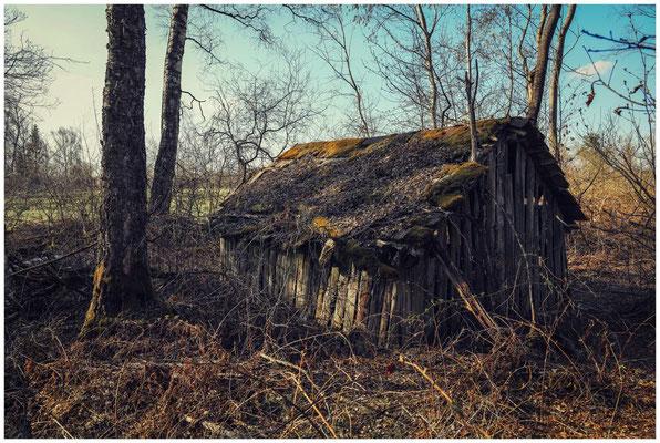 """""""Tiny House"""" 6658"""