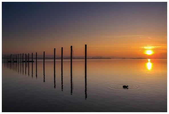 Sonnenaufgang im Jachthafen Iznang 3291