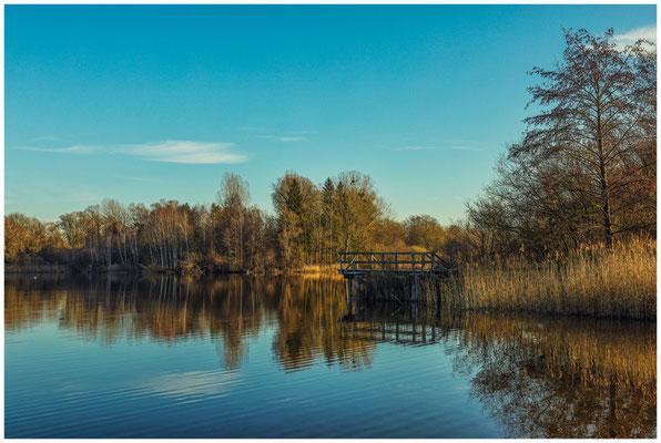 Uferlandschaft Böhringer See 1568