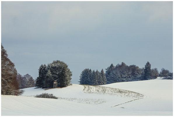 Landschaft bei Münchhöf mit Jägerhochstand  5438