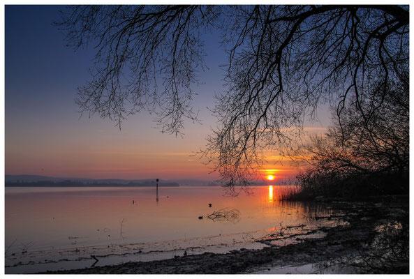 Sonnenaufgang im Jachthafen Iznang 3265