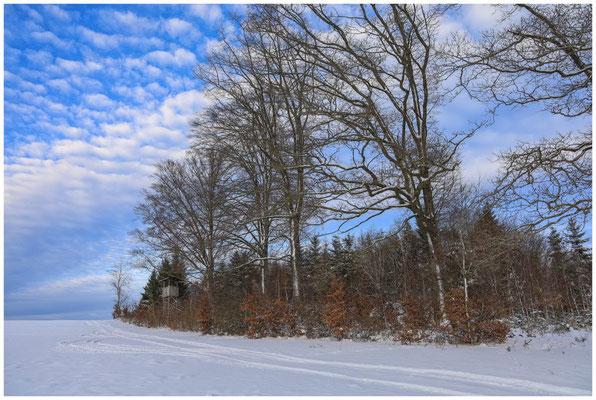 Schneelandschaft mit Hochstand bei Heudorf i. Hg. 5716