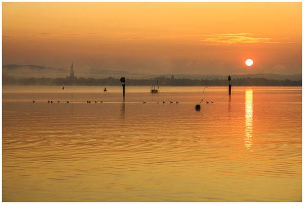 Sonnenaufgang über dem Zeller See mit Radolfzeller Münster 0539