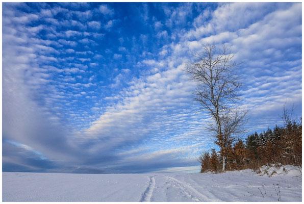 Schneelandschaft mit sich auflösenden Schäfchenwolken 5706