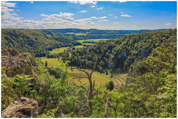 Blick vom Stiegelesfelsen ins Donautal 7869