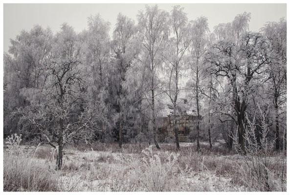 Winterlandschaft mit altem Bauernhaus bei Stockach 2483
