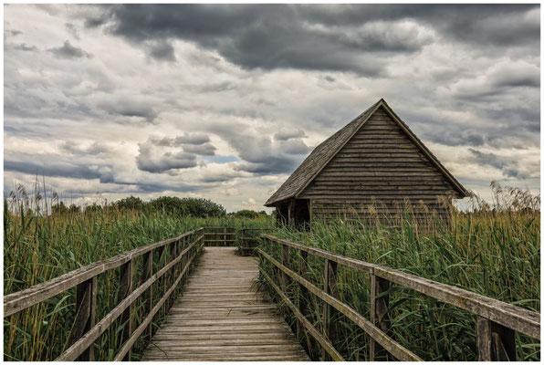 Holzhütte im Ried 3362